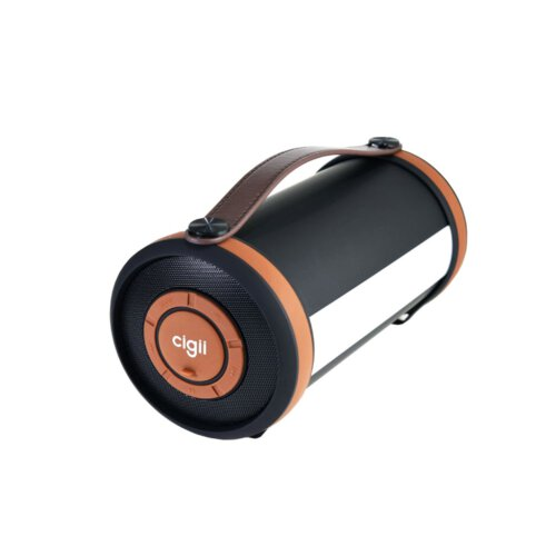 اسپیکر بلوتوثی قابل حمل سی جی مدل S22C