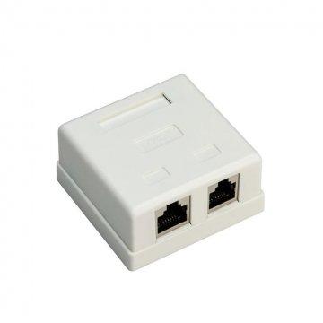 کیستون باکس شبکه CAT5e پی نت پلاس 20-100